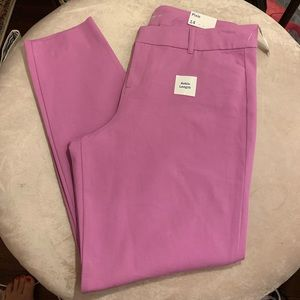 OLD NAVY NWT! Ankle pixie *Berry Pretty* Sz 14